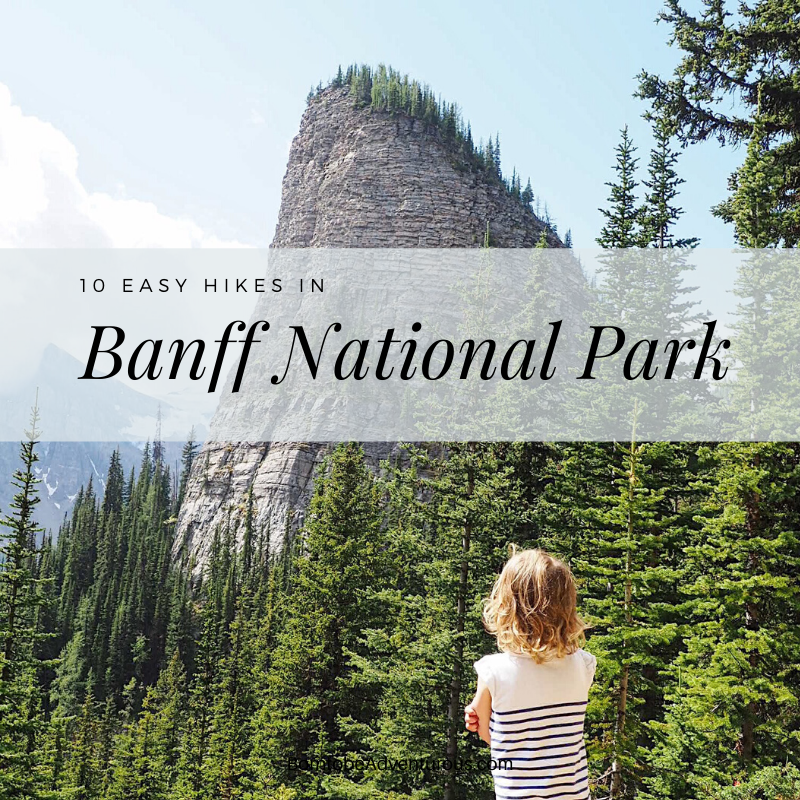 Easy hikes in Banff National Park